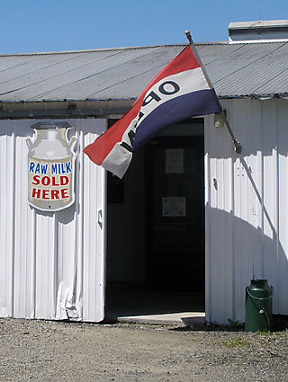 06-12-08-milk-farm