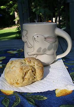 08-30-08-tea&scone-early-sun
