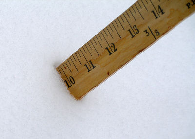Ruler in the snow