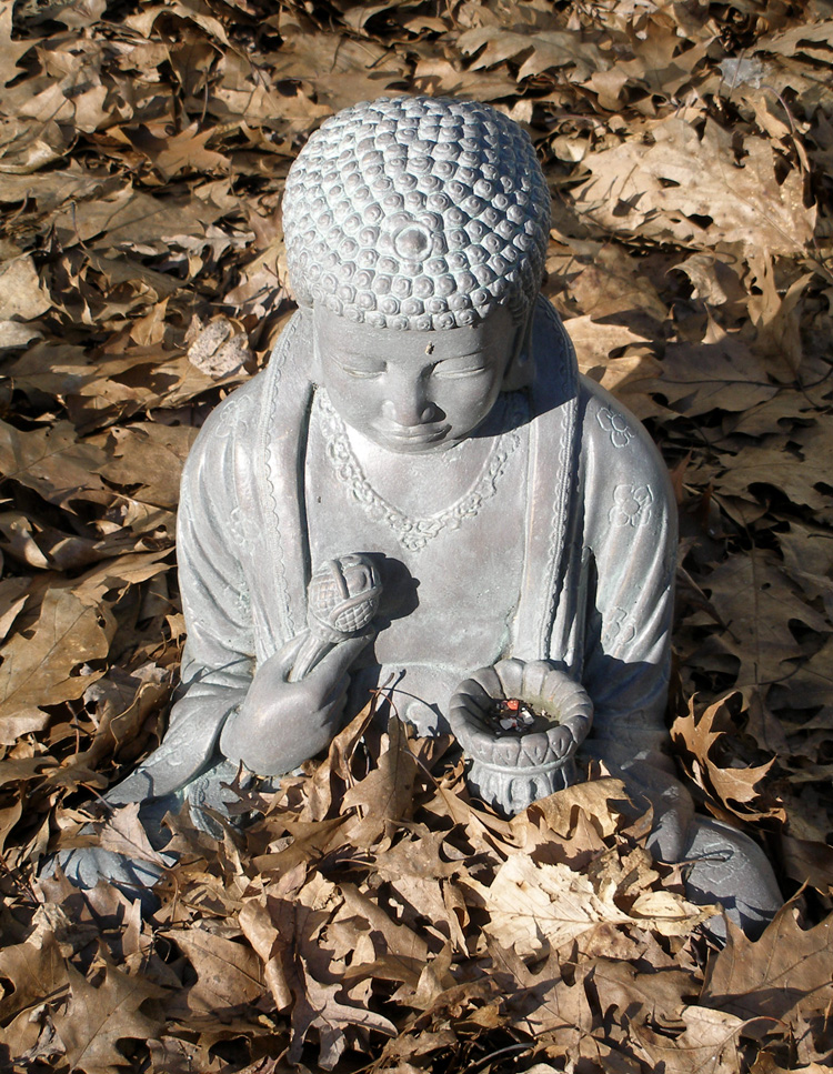 3-15-buddha-leaves-01w