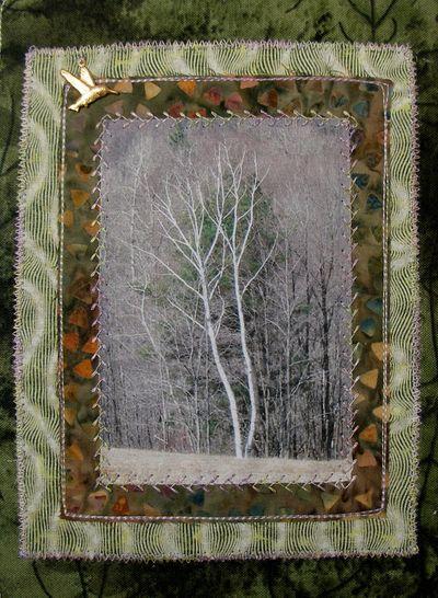 Birchs-pg-KimB-01a