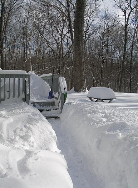 Jan-2011-snow-05