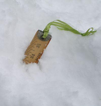 Jan-2011-snow-02