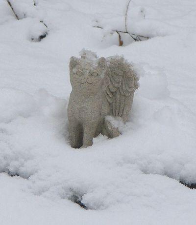 Katie's grave - 2