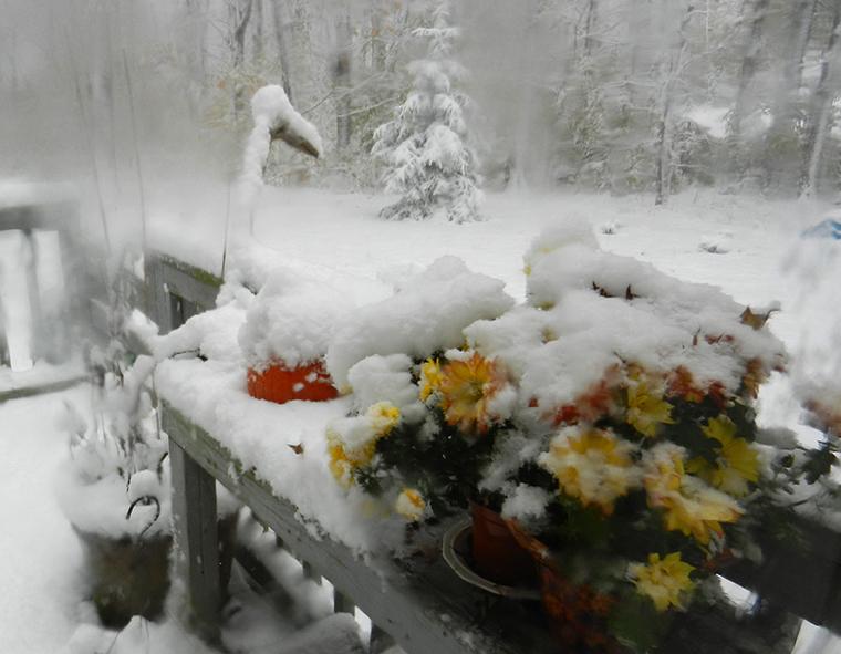 Snow-oct-29th-01