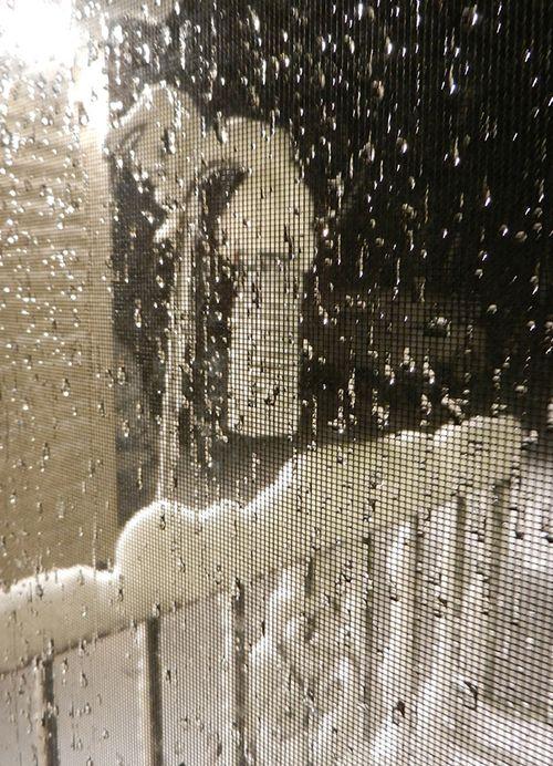 Snow-eve-feeder