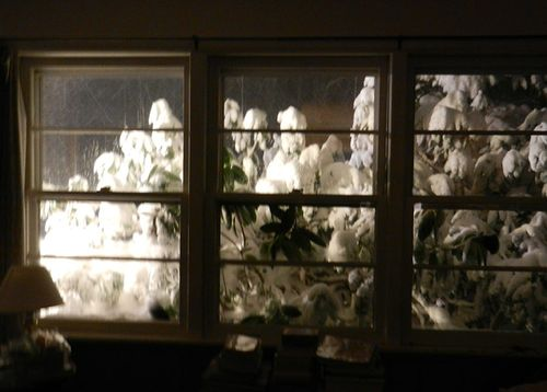 Snow-eve-windows