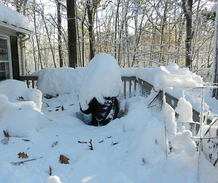 Post-snow-porch