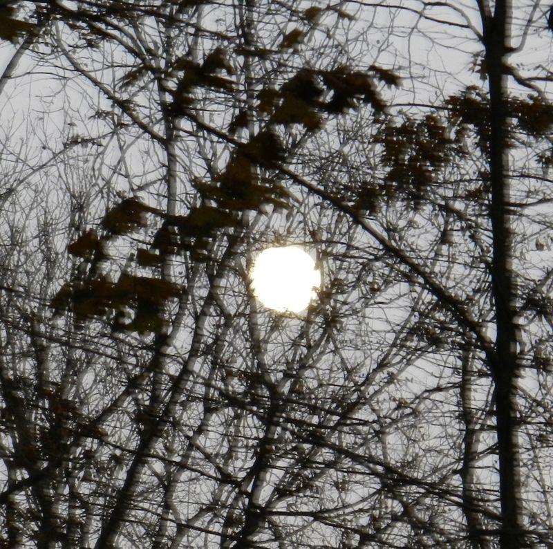 Moon-web-01