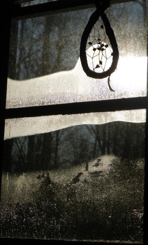 Bedroom-window-flu-jan