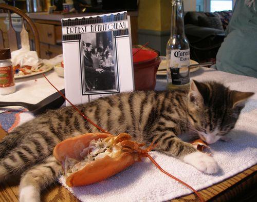 2011-June-lobster-literature-sammy