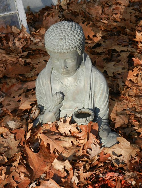 Buddha-new-yrs-day