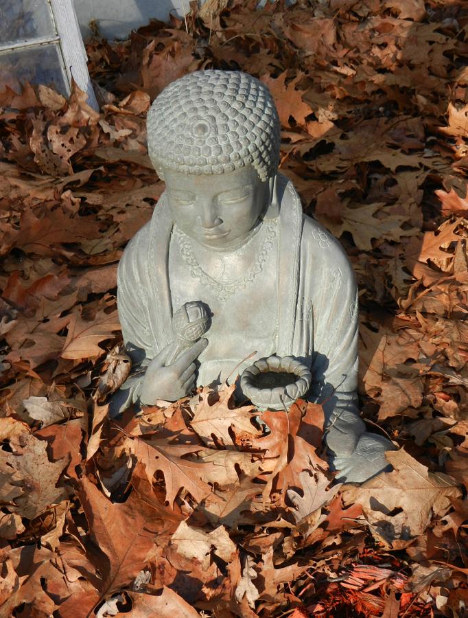 Buddha-new-yrs-day