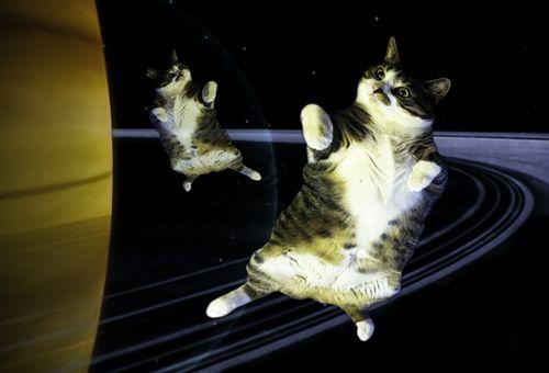 Sammy in Space-CHA CHA!